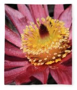 Pasque Flower Macro Fleece Blanket