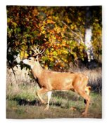 Passing Buck In Autumn Field Fleece Blanket