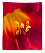 Passion Fleece Blanket