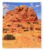Pastel Petrified Sand Dunes Fleece Blanket