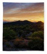 Pastel Sonoran Skies  Fleece Blanket