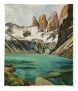 Patagonia Fleece Blanket