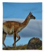 Patagonian Guanaco - Chile Fleece Blanket