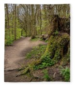 Path In Judy Woods Fleece Blanket