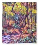 Path Near Pandapas Fleece Blanket