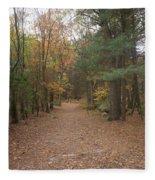 Path On Wilsons Mountain Fleece Blanket