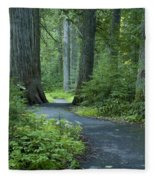 Path Through The Cedars Fleece Blanket