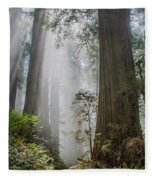 Path Through The Light Fleece Blanket