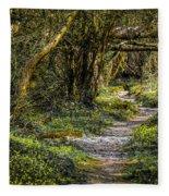 Path Through Yeats' Fairy Forest Fleece Blanket by James Truett