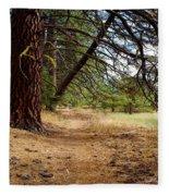 Path To Enlightenment 1 Fleece Blanket