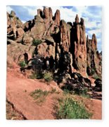 Path To Red Rocks Fleece Blanket