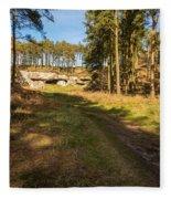 Path To St Cuthbert's Cave Fleece Blanket