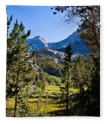 Path To Treasure Lakes Fleece Blanket