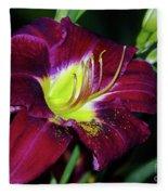 Patricia Neal Daylily Fleece Blanket