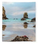 Patrick And Friends Visit Cannon Beach Fleece Blanket