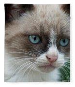 Pauls Little Cat Fleece Blanket