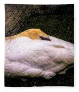 Peace At Nightfall Fleece Blanket