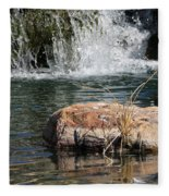 Peace In The Park Fleece Blanket