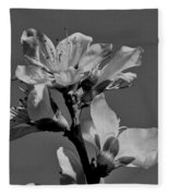 Peach Blossoms In Grayscale Fleece Blanket