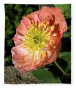 Peach Colored Poppy Fleece Blanket