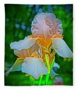 Peach Curtsey Fleece Blanket