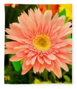Peach Gerbera Daisy Fleece Blanket