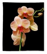 Peach Orchids Fleece Blanket