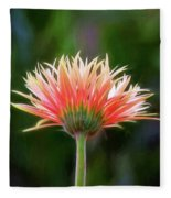 Peach Perfection Fleece Blanket