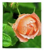 Peach Rose In The Rain Fleece Blanket