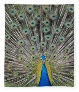 Peacock Display Fleece Blanket