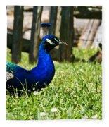 Peafowl Eye To Eye Fleece Blanket