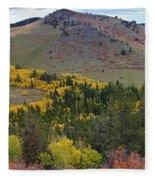 Peak To Peak Highway Boulder County Colorado Autumn View Fleece Blanket