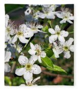 Pear Tree Blossoms Iv Fleece Blanket