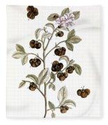 Peco Tea, 1735 Fleece Blanket