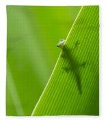 Peek A Boo Gecko Fleece Blanket