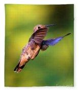Peek-a-boo Hummingbird Fleece Blanket