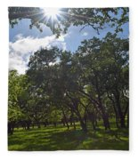 Peeping Sun Fleece Blanket