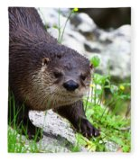 Peering Otter Fleece Blanket