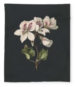 Pelargonium Album Bicolor, M De Gijselaar 1830 Fleece Blanket