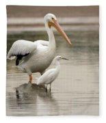 Pelican And Snowy Egret 6459-113017-1cr Fleece Blanket