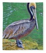 Pelican By The Pier Fleece Blanket