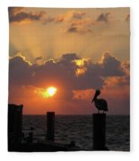 Pelican Dawn Fleece Blanket
