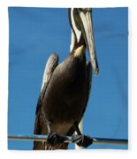 Pelican Dreams Fleece Blanket