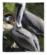 Pelican Duo Fleece Blanket