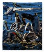 Pelican Fiesta Fleece Blanket