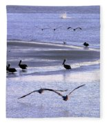 Pelican Island Fleece Blanket