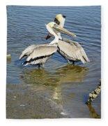 Pelican Love Fleece Blanket