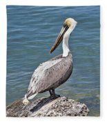 Pelican On Rock Fleece Blanket