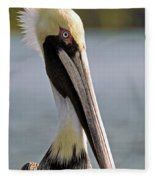Pelican Portrait Fleece Blanket