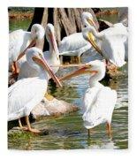 Pelican Squabble Fleece Blanket